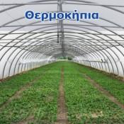 Greenhouses (1)