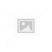 Γυαλοχαρτιέρες (7)